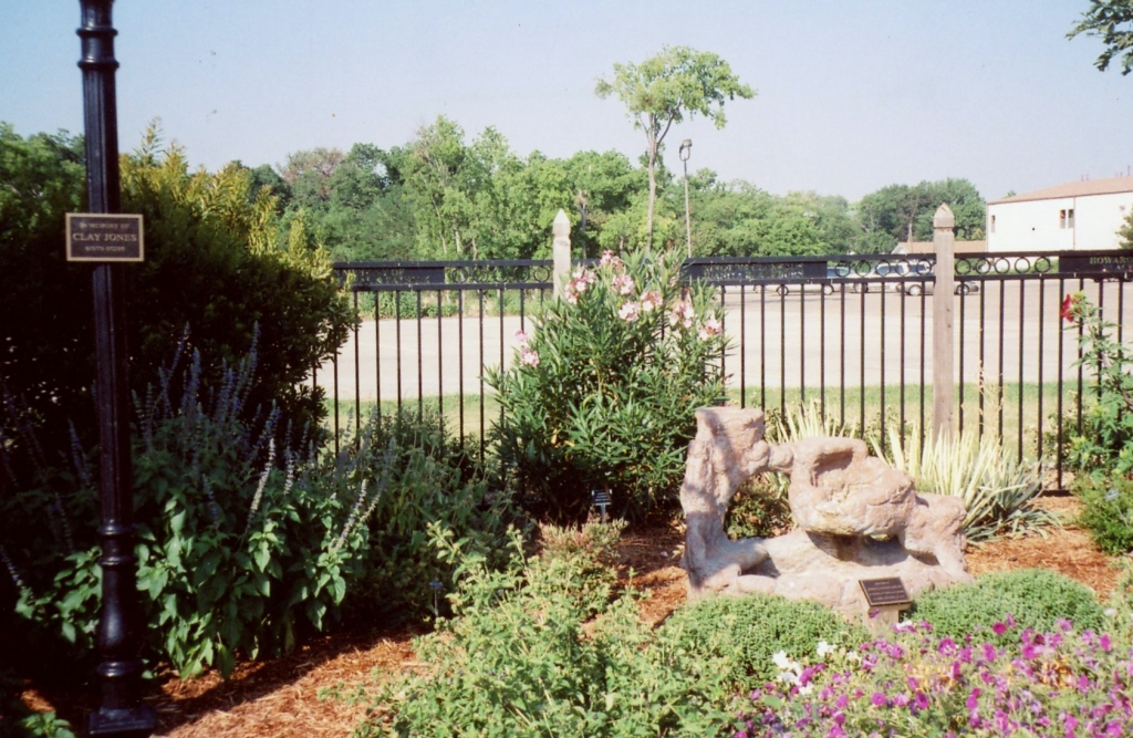 After completion with plants, landscaping, and fence